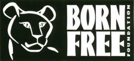 Born Free Foundation Weather Lottery